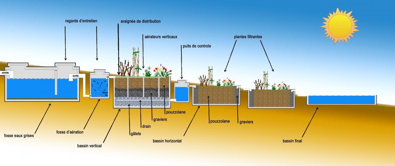 Piscine Phyto Epuration Jpg